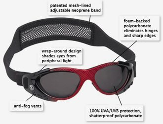 Xtreme Sports Sunglasses