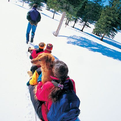 winter outdoor activity