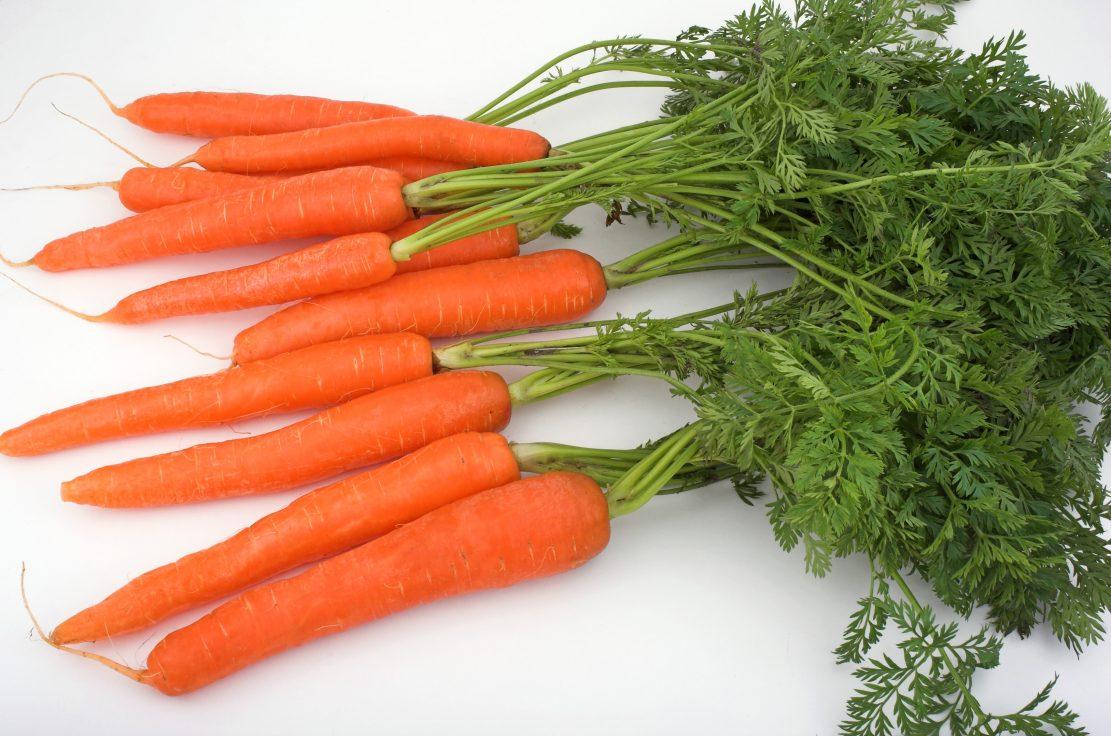 fruits and vegetables that help improve eyesight لم يسبق له مثيل ...